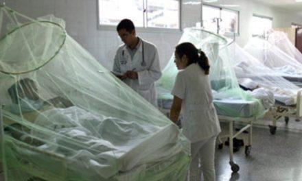 Sector salud no puede con el dengue