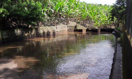 Ayuntamiento de Tlapacoyan, indiferente a la contaminación del agua del sistema municipal