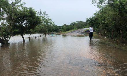 En Chinameca el desbordamiento del río Huazuntlán, entre otros, algunos cultivos han resultado afectados